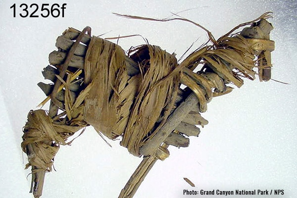Grand Canyon Artifact - Split-Twig Figurine