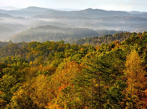 Mountain top view of autumn trees in Great Smoky Mountain National Park