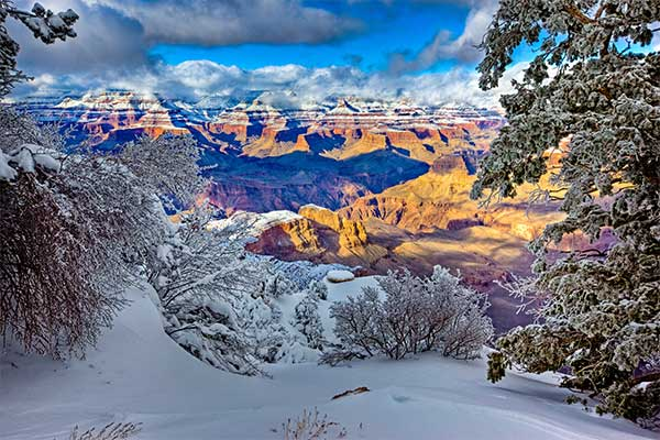 Beautifully lighted Grand Canyon with snowy trees in foreground