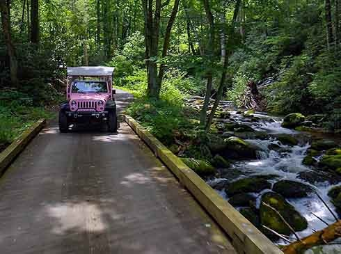 Pink Jeep traveling through lush forest on the Roaring Fork Motor Nature Trail, Smoky Mountains