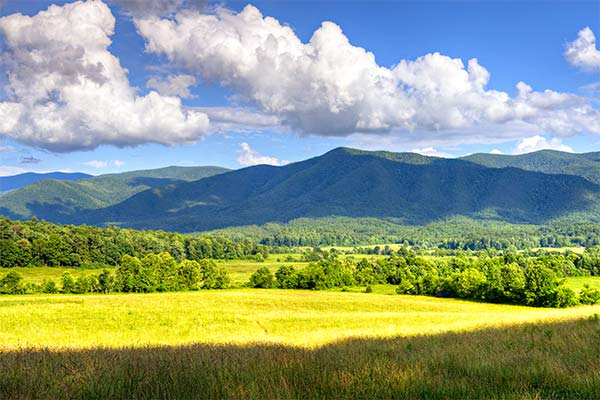 Beautiful summer view of Cades Cove Valley in Great Smoky Mountains National Park