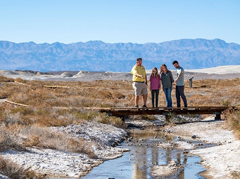 Pink Jeep tour guide and guests looking at pupfish in stream along Salt Creek Interpretive Trail, Death Valley