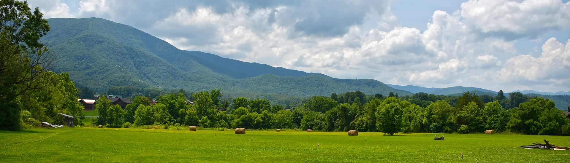 Summertime view of Smoky Mountains behind green pasture dotted with hay bales, Wears Valley, TN