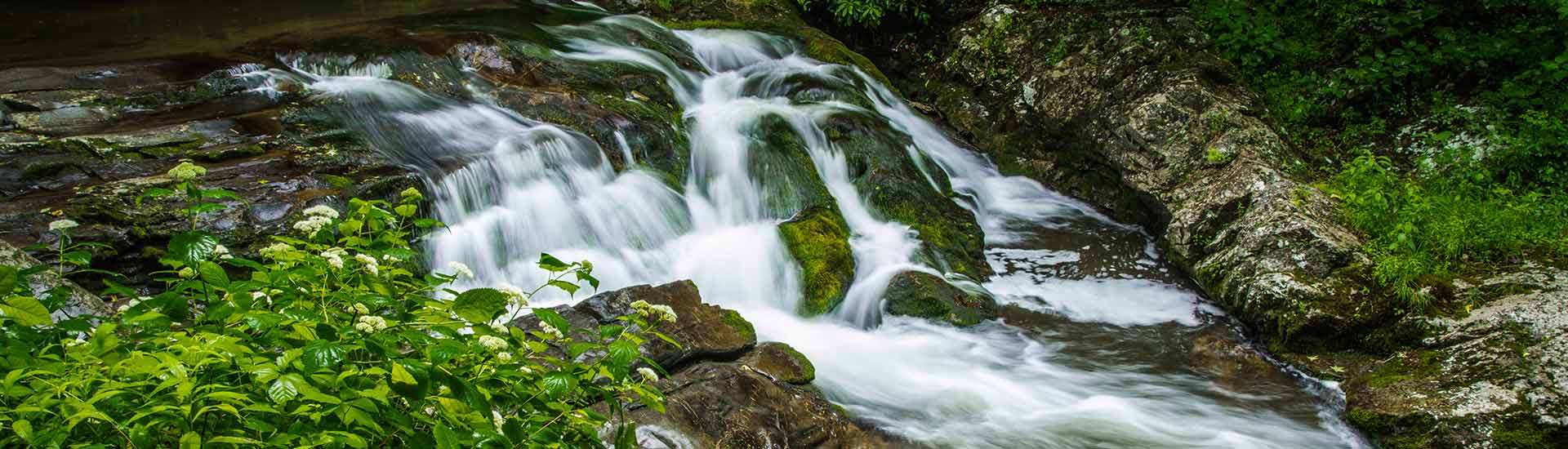 Roadside stream along Little River Scenic Road, Great Smoky Mountains National Park, TN