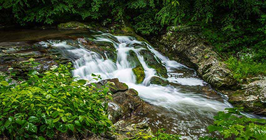 Roadside waterfall along Little Rive Road, GSMNP, Pink Jeep Valley and Views Tour