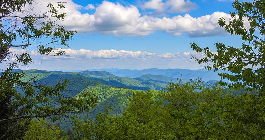 Summer view of Smoky Mountains with blue sky, Pink Jeep Tours Valley and Views Tour