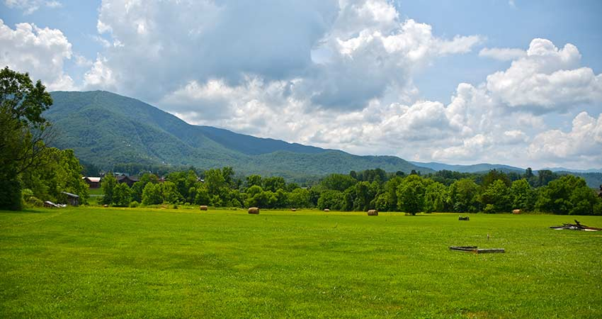 Green pastureland in Wears Valley, TN with Great Smoky Mountains in distance