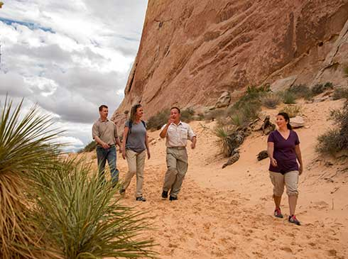 Pink Jeep guide and three guests walking sandy trail near the White Domes in Valley of Fire, Nevada