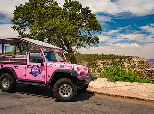 Pink® Jeep® vehicle parked by a tree overlooking the Grand Canyon National Park rim