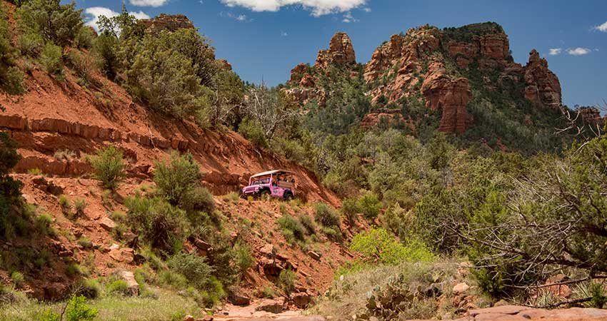 Pink Jeep Tours Sedona Sean
